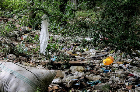 پسماندها، خاک مناطق جنگلی را با «فلزات سنگین» آلوده میکنند