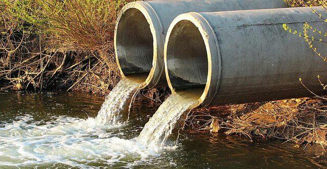 طبیعت، سالانه ۴۱.۷ میلیون تن زباله انسانی را پاکسازی میکند