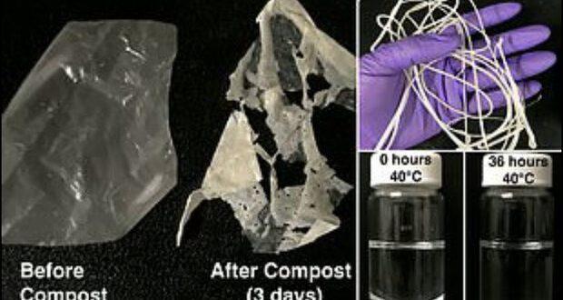 تولید پلاستیکی که در مجاورت گرما تجزیه می شود