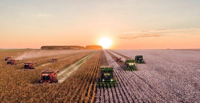 تغییرات آبوهوایی و کاهش ۲۱ درصدی بهرهوری کشاورزی