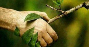 گذر از بحرانهای محیط زیست در گرو مشارکت عموم
