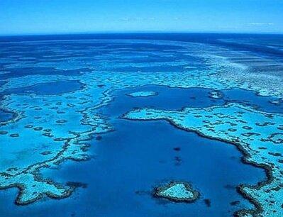 """اختصاص یک دهه به نام """"علوم اقیانوسها""""/۵ مسیر فناورانه توسعه پایدار دریاها"""