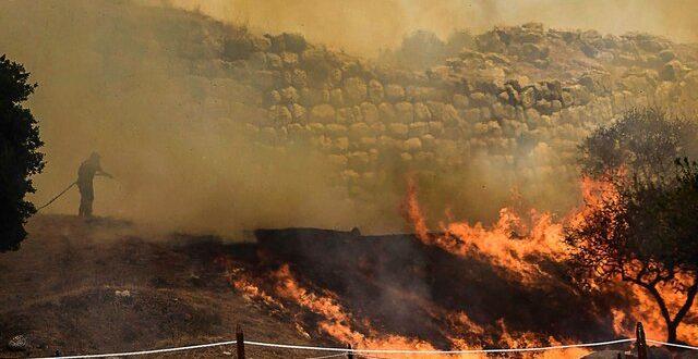 خطرات آتش سوزی های جنگلی برای زمین و بشر