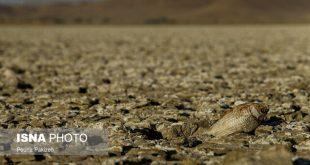 نیاز به مدیریت جامع آب برای مقابله با خشکسالی در تهران