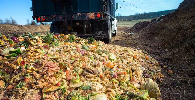 چگونه بخش کشاورزی به کاهش تولید زباله کمک کند؟